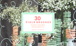 pixlr brushes: hand-drawn ornaments by truants