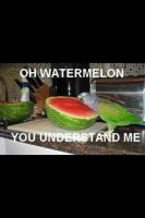 Oh Watermelon, You Understand Me. by LightShadow93