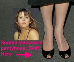 Sophie Marceau in pantyhose by pantyhosesniffer