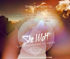 David guetta feat sia/SHE WOLF by chumkiu