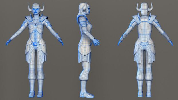 Paladin Princess Wireframe by pranayk