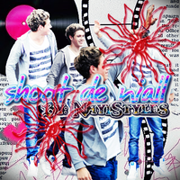 Shoot De Niall 2 by nayiStyles