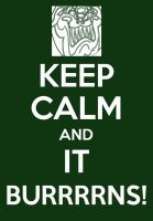 Keep Calm Poster-It Burns by elfofcourage