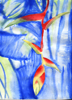Red Plant with Blue Background by Paradasia