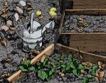 Watering can by Spikey-T