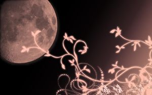 Moon by Terol