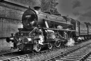 44767 (George Stephenson) by PaulCastleton