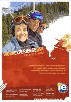 WORK EXPERIENCE USA 2006 by Curupiraufes