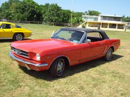 1966 Ford Mustang 289 V8 by Mister-Lou
