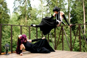 Bleach: cats on the fence by ElenaLeetah