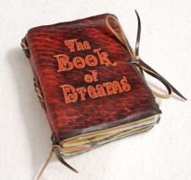 Dream book by gildbookbinders