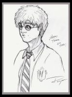 Potter by Drawingremy
