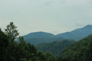 the hills are alive by fotomademoiselle