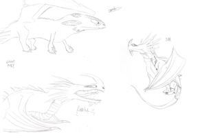 dragons and character by skrill77