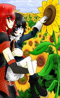 Field of Sunflowers by Tomacchi