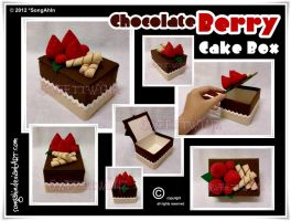 Chocolate Berry Cake Box by SongAhIn