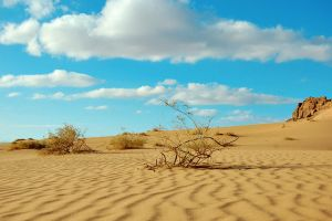Nature in Tabuk by SaUdbaLwi