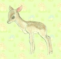 A Baby Fawn by Rachey827