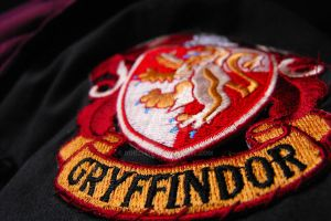 GO, GO, GRYFFINDOR by Rob234111