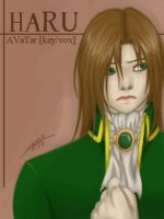 AVaTar -the prince- by yami0204