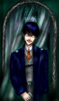 The Veil and Mr Potter by cindergirl