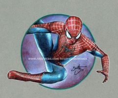 The Amazing Spiderman (2014) by scotty309