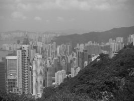 From The Peak. by greenhotchocolate