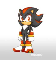 Shadow the Hedgie by sonic75619