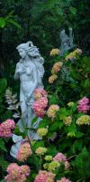 Venus And Hydrangea by Forestina-Fotos