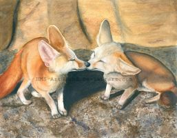 Fennec Fox Love by HMS-ArtHound