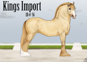 #56 Kings Import by emmy1320