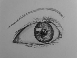 The Eye | Ink | fine art practice by CrypticGrin