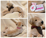 Douglas Cuddle Toys - Molly Yellow Labrador by The-Toy-Chest