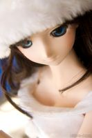 Dollfie Christmas 07 by ultima-i