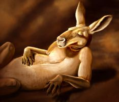 Laid Back Roo by Tigerty