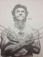 Wolverine by AguilarX