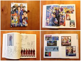 Ace Attorney Dual Destinies Visual Book by BenjaminHunter
