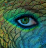 Peacock Eye by secretgal1234