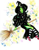 Commission:  Wicked Witch by raccoon-eyes