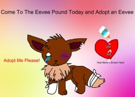Eevee Pound ID contest by Meimi-The-Fox