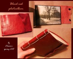 Blood-red photo album by Elescave