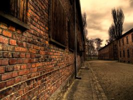 Auschwitz HDR 2 by ink-gp