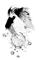 Crow by Hassly