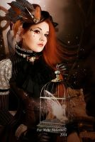 A Steampunk Fairytale by Fae-Melie-Melusine