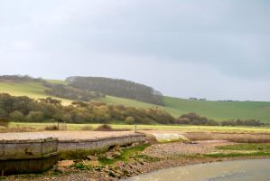 Cuckmere by janciss