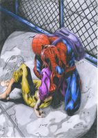 Spider-Man: A Hero's Price by Sunburst-Super-Hero