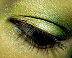 Green Eye CloseUp Wallpaper by temptalia