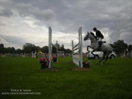 British Show Jumping 84 by mapal-stock