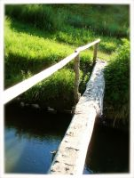 Crossing Over by moiety