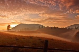 Autumn morning. by lica20